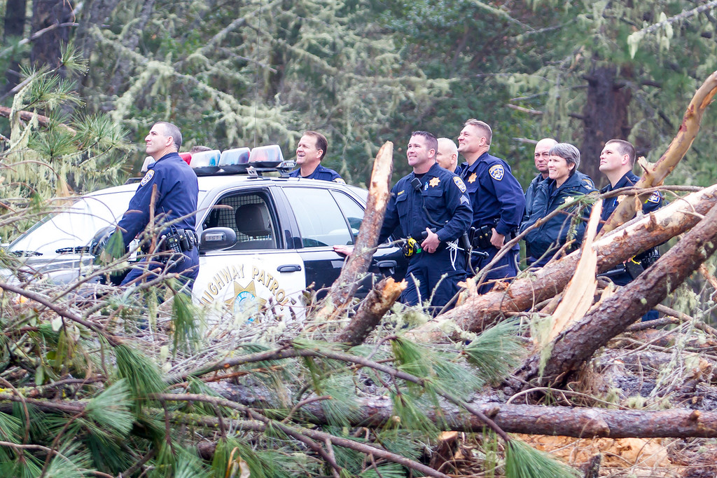 Description of . Another group of officers watch the extraction operation of the second and third tree sitters. Photo by Steve Eberhard