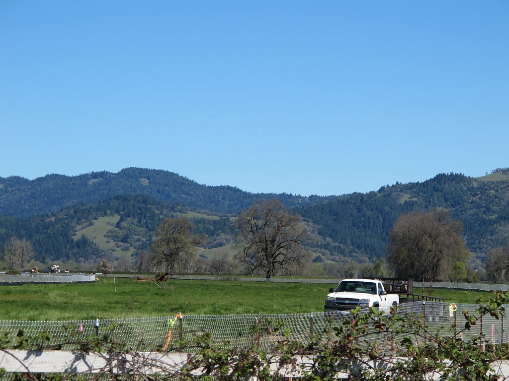 Description of . New fencing north of Hearst Willits Road.