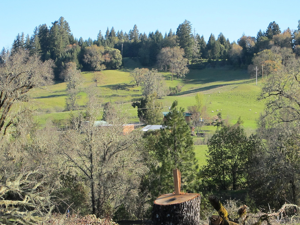 Description of . Photo taken from a ridge between Highway 101 and the valley. Much of this ridge will be removed for the southern bypass interchange.