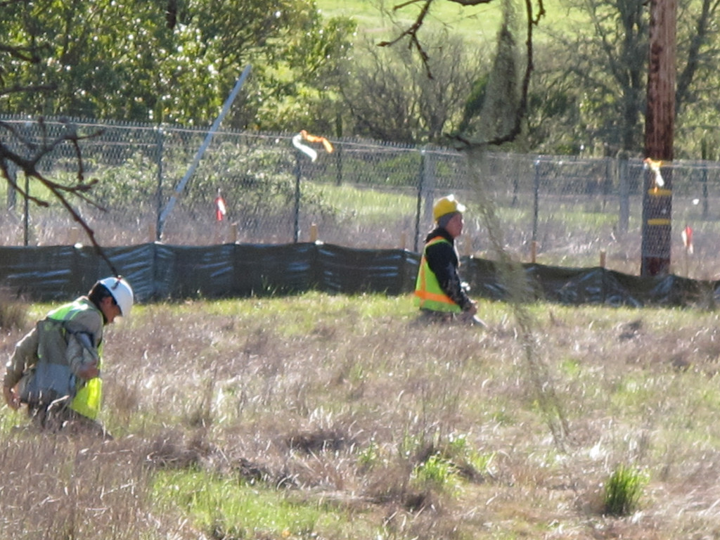 Description of . More CalTrans biologists looking for wildlife activity.