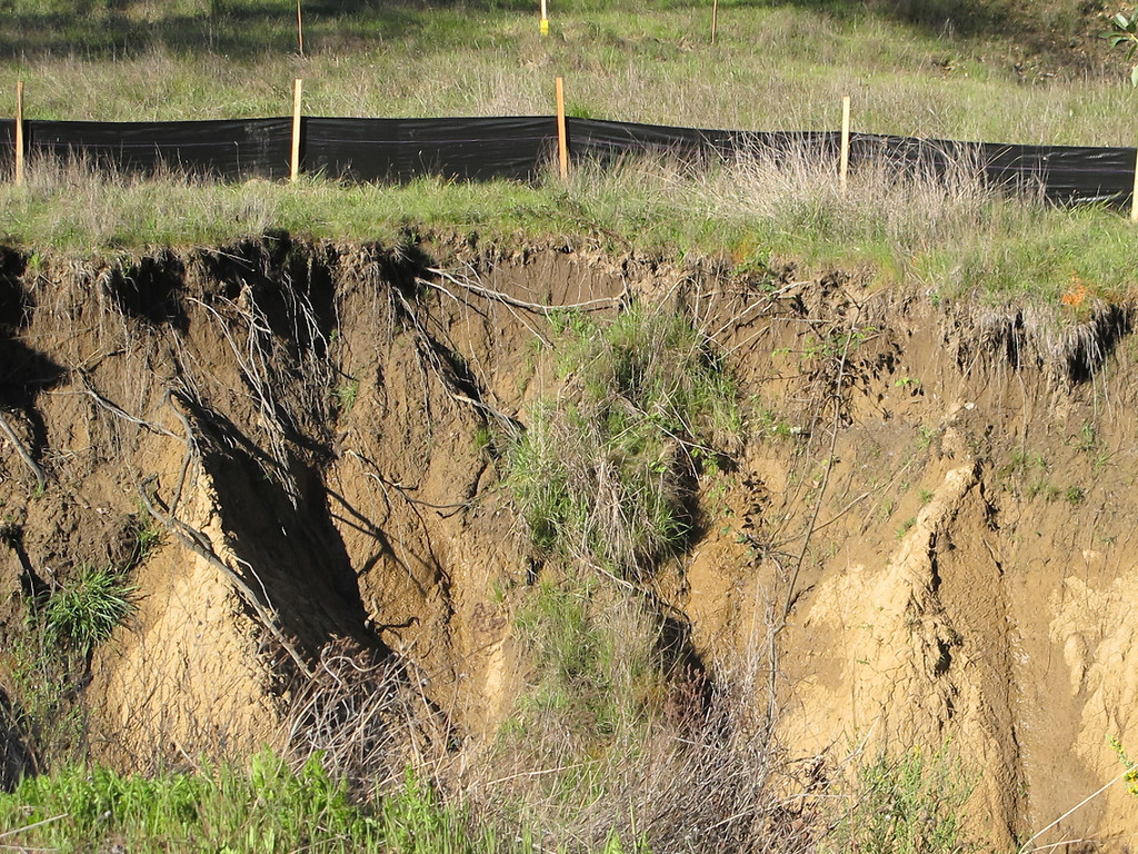 Description of . Existing erosion in a creekbed along the southern end of the bypass.